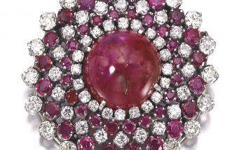 Ruby and diamond brooch
