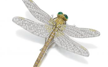 Emerald, coloured diamond and diamond dragonfly brooch, Meister
